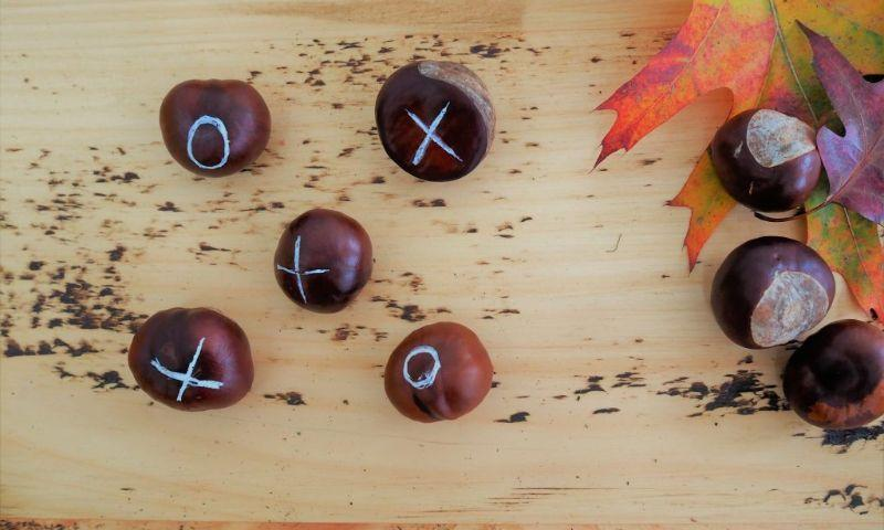 Conker Noughts and Crosses7