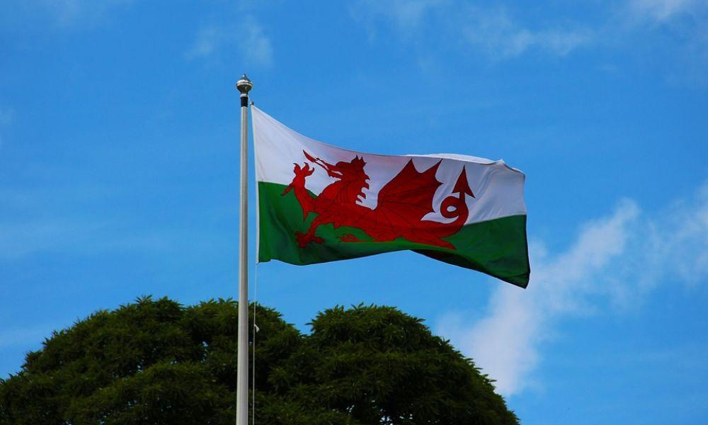 8 St David's Day Facts for Kids