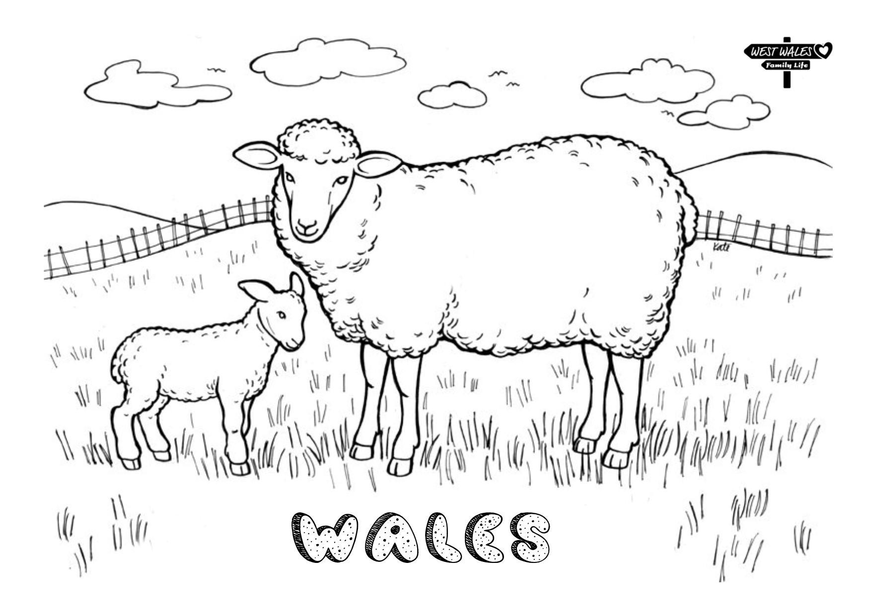 West Wales Family Life Printable St Davids Day Colouring Sheets for the Kids Page 4