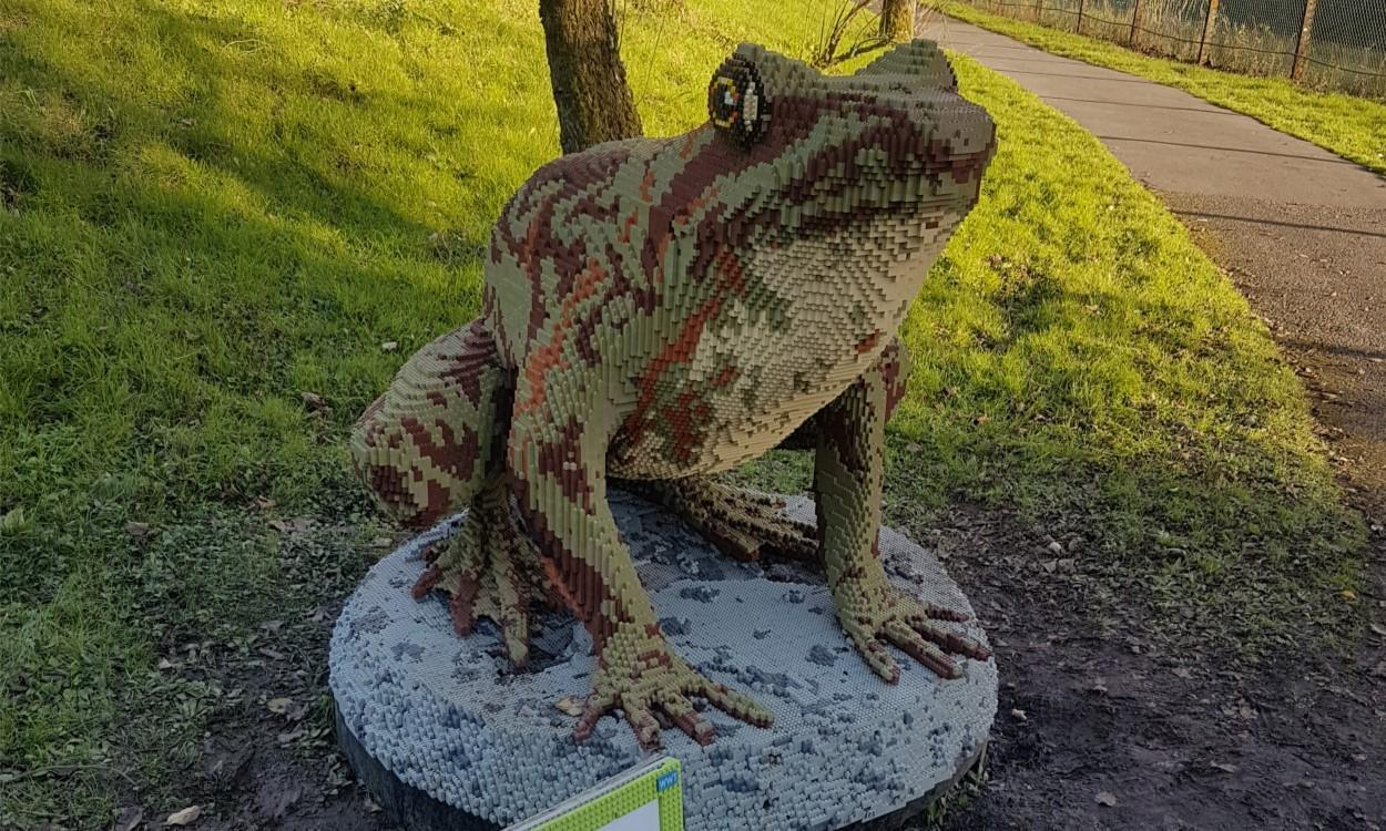LEGO Brick Animal Trail at WWT Llanelli Frog
