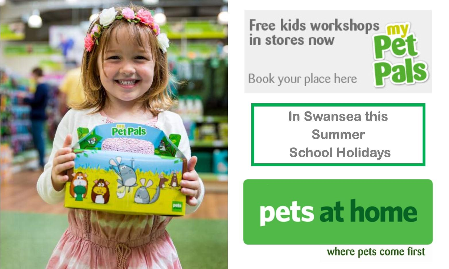 Summer Friendly Fish Pets at Home Workshop in Swansea