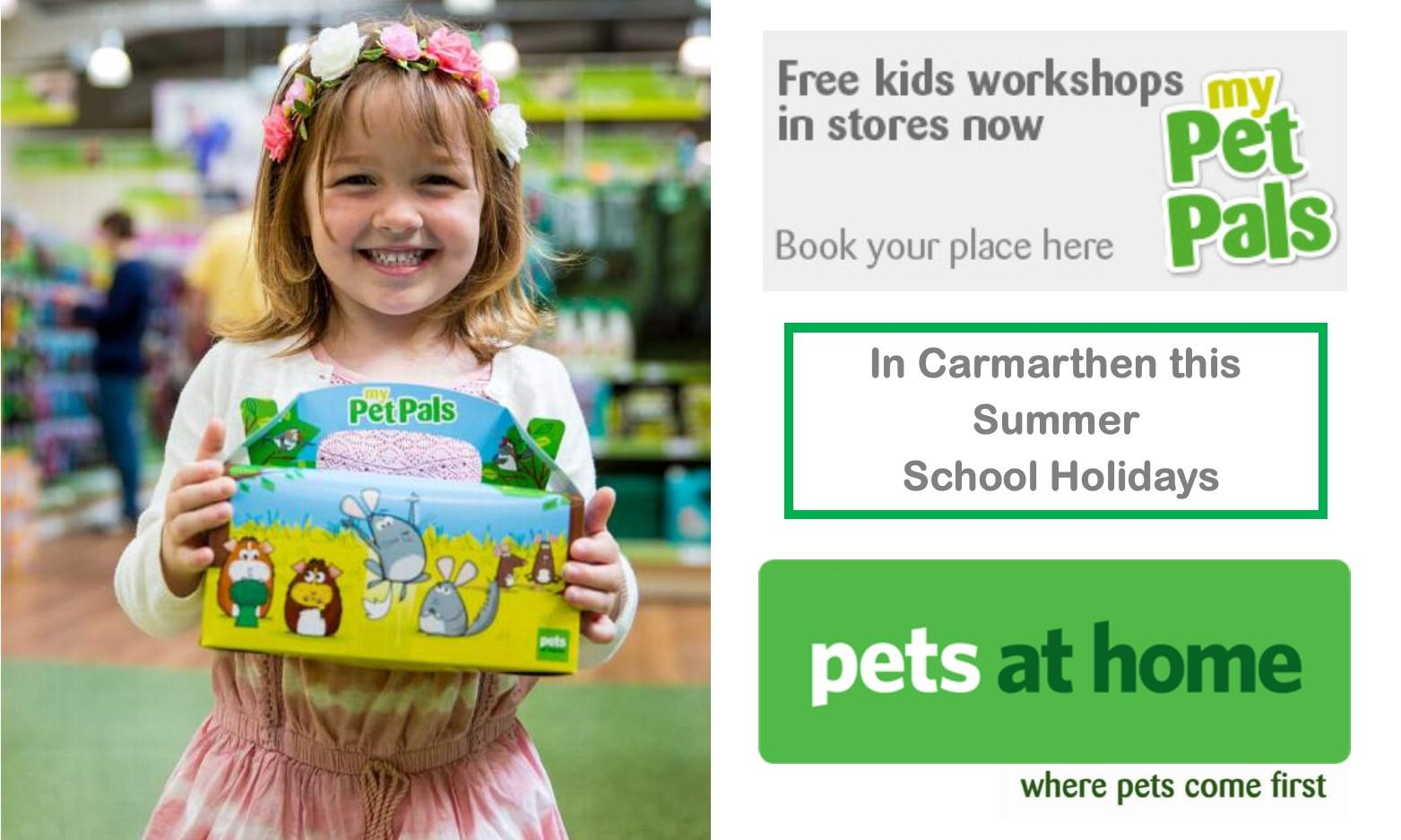 Summer Cool Pets at Home Workshop in Carmarthen