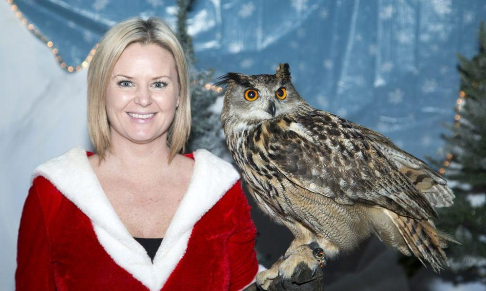 Christmas Owl Show at National Botanic Garden of Wales