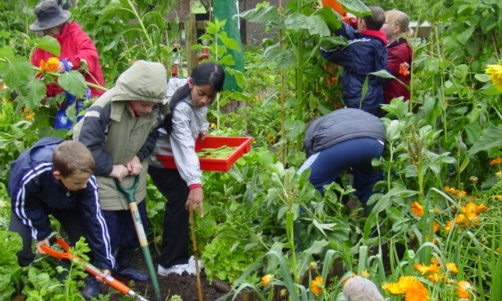 February Half Term Activities at National Botanic Garden of Wales