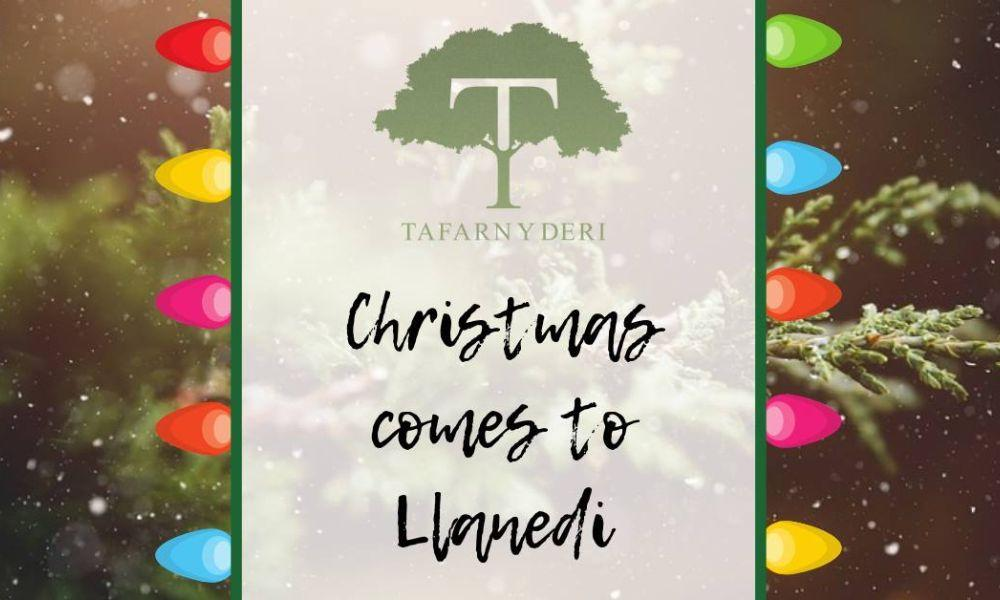 Llanedi Christmas Lights Switch On