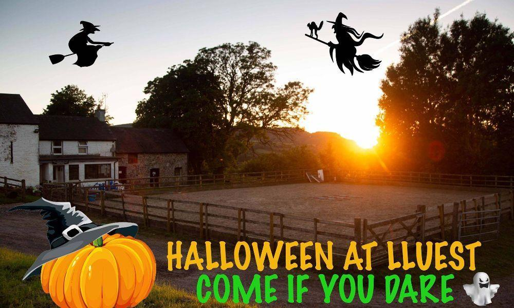 Lluest's Halloween Event