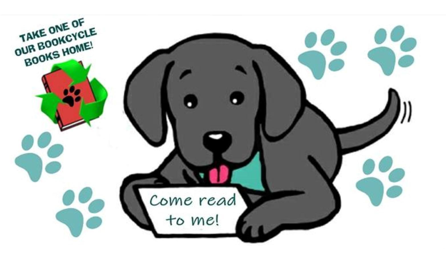 Reading with Harper the Reading Dog at Milford Haven Library