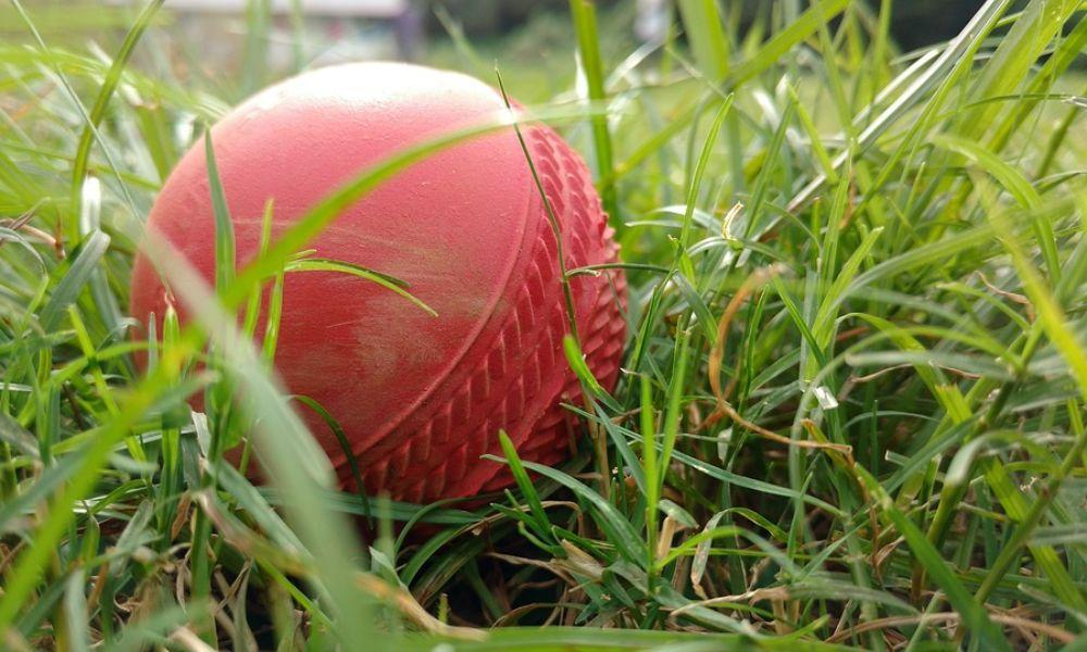 Cricket and Summer Games