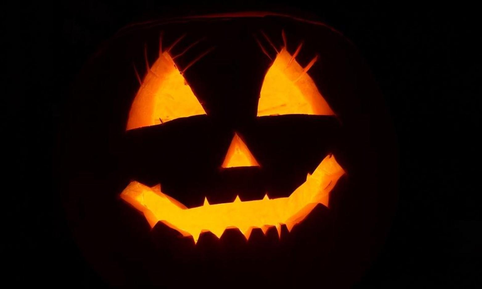 Halloween Quiz Trail at the Welsh Wildlife Centre