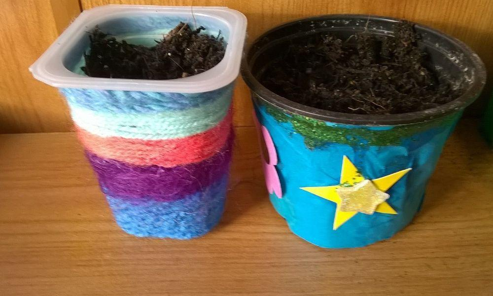 Make Spring Bulb Planters at The Welsh Wildlife Centre