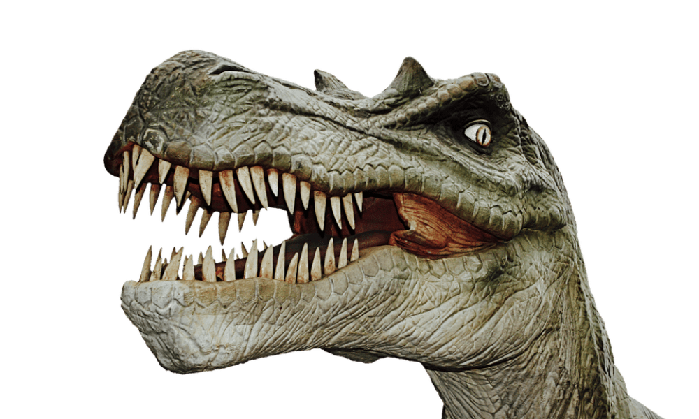 Dino Day at Swansea Waterfront Museum